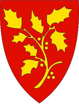 bilde av bredbånd Leirvik og kommunevåpen